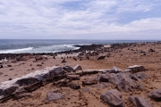 Namibie_Cape-Cross_01
