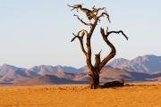 Namibie_Kanaan_11