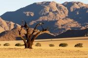 Namibie_Kanaan_12