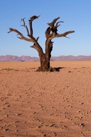 Namibie_Kanaan_15