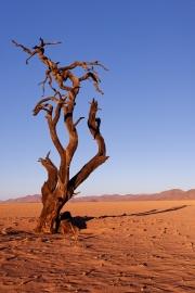 Namibie_Kanaan_18