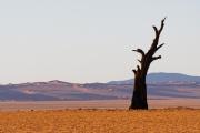 Namibie_Kanaan_24
