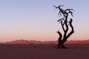 Namibie_Kanaan_26