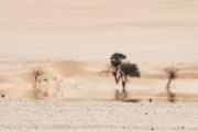 Namibie_mirage_04