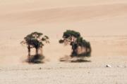 Namibie_mirage_05