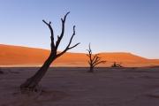 Namibie_Deadvlei_13