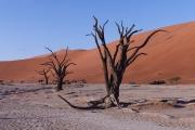 Namibie_Deadvlei_14
