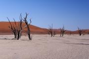 Namibie_Deadvlei_15