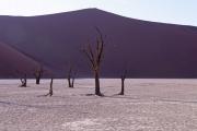 Namibie_Deadvlei_16