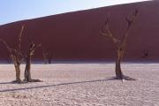 Namibie_Deadvlei_17