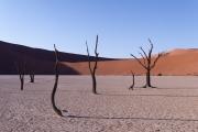 Namibie_Deadvlei_19