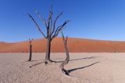 Namibie_Deadvlei_20