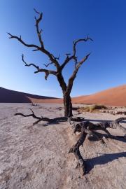 Namibie_Deadvlei_23
