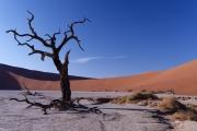 Namibie_Deadvlei_25