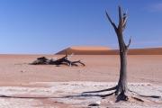 Namibie_Deadvlei_28