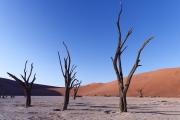 Namibie_Deadvlei_29