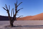 Namibie_Deadvlei_30