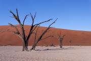 Namibie_Deadvlei_32