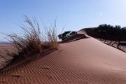 Namibie_Elim-Dune_02