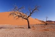 Namibie_Sossuvlei_05
