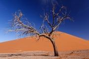 Namibie_Sossuvlei_06