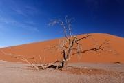 Namibie_Sossuvlei_08