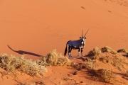 Namibie_Sossuvlei_11