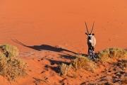 Namibie_Sossuvlei_12